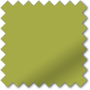 Primero Vine Green - Blackout Roller Blind