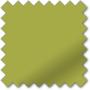 Primo Vine Green - Roller Blind